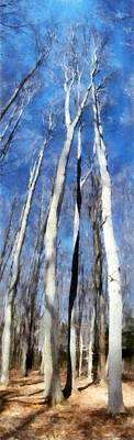 Lakeshore Digital Art - Tree Stand In Early Spring by Michelle Calkins