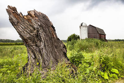 Photograph - Tree Stump And Barn - New York State by Gary Heller
