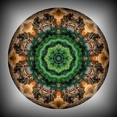 Photograph - Tree Sunset Mandala by Beth Sawickie