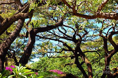 Surrealism Royalty Free Images - Tree Tango Royalty-Free Image by Flamingo Graphix John Ellis