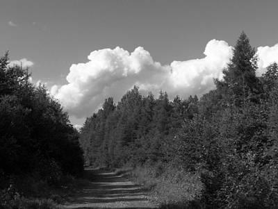 Tree Top Clouds Original