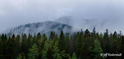 Photograph - Tree Top Clouds by Jeff Niederstadt