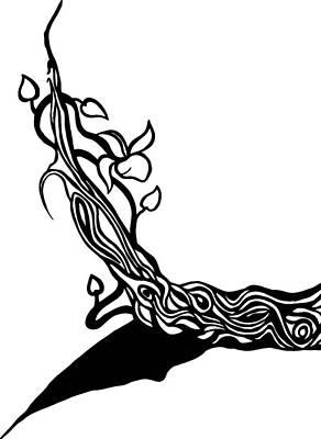 Stillness Drawing - Tree Vines by Tu Ly