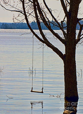 Muskoka Photograph - Tree With A Swing by Les Palenik