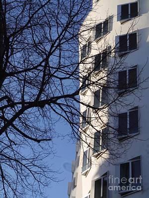 Treeandgehrysunrise Original