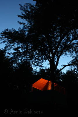 Photograph - Treehouse Campout by Anne Babineau