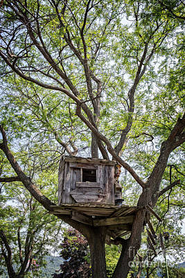 Treehouse Art Print by Edward Fielding