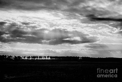 Photograph - Treeline by Tom Brickhouse