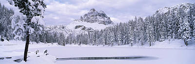 Cold Temperature Photograph - Trees Along A Frozen Lake, Lake by Panoramic Images