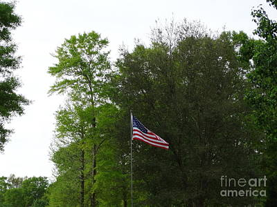 Trees And Flag Print by Joseph Baril