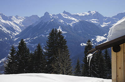 Photograph - Trees And Mountains In Winter by Matthias Hauser