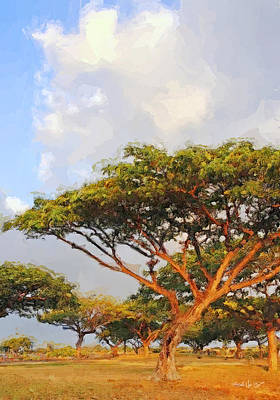 Digital Art - Trees And Sky - Kona Hi by Jim Pavelle