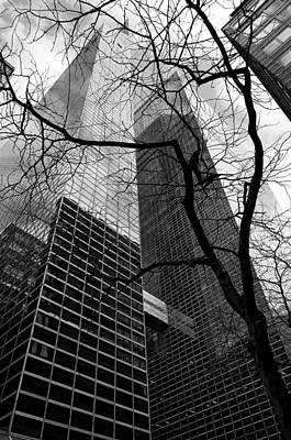 Photograph - Trees And Skyscrapers No 1 by Cornelis Verwaal