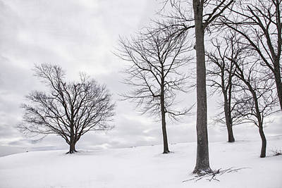 Daviess County Photograph - Trees And Snow by Wendell Thompson