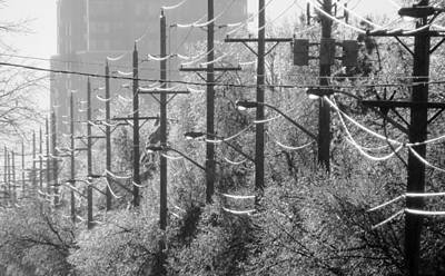 Photograph - Trees And Telephone Lines After An Ice Storm by Rob Huntley