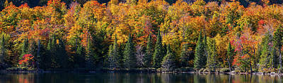 Quebec Photograph - Trees At Pondside, East Bolton, Quebec by Panoramic Images