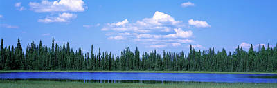 Photograph - Trees At The Lakeside, Alaska, Usa by Panoramic Images