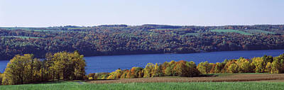 Finger Lakes Photograph - Trees At The Lakeside, Owasco Lake by Panoramic Images