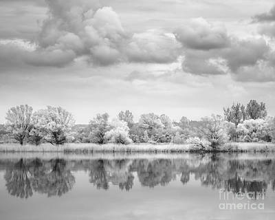 Photograph - Trees At The River by Alexander Kunz
