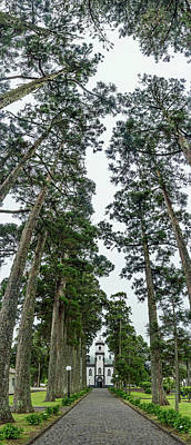 Sete Photograph - Trees Both Sides On A Path Leading by Panoramic Images