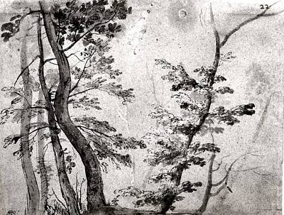 Sepia Ink Drawing - Trees by French artist in the circle of Giovanni Francesco Grimaldi