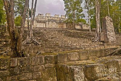 Stela Photograph - Trees Grow At Calakmul Ruins by Ellen Thane