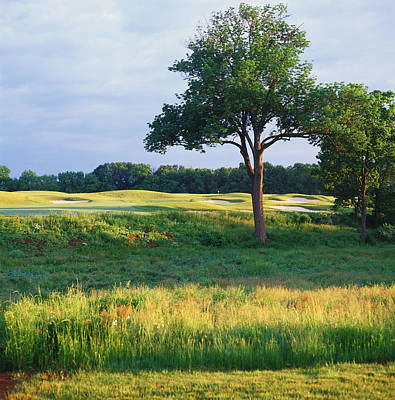 Ringo Photograph - Trees In A Golf Course, Heron Glen Golf by Panoramic Images