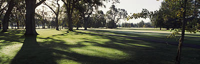 Napa Photograph - Trees In A Golf Course, Silverado by Panoramic Images