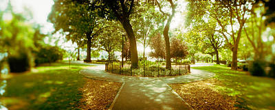 Greenpoint Photograph - Trees In A Park, Mccarren Park by Panoramic Images