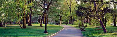 Public Park Photograph - Trees In A Public Park, Central Park by Panoramic Images
