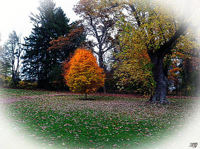 Mixed Media Royalty Free Images - Trees in Autumn Royalty-Free Image by Michelle Hoshino