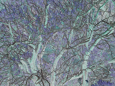 Photograph - Trees In Celadon And Lavender by Stephanie Grant