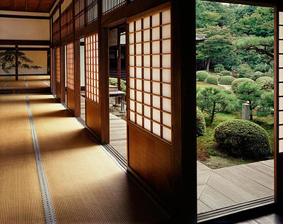 Interior Scene Photograph - Trees In Front Of A Temple, Zuishin by Panoramic Images