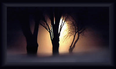 Trees In Midnight Fog Art Print by Steve Ohlsen
