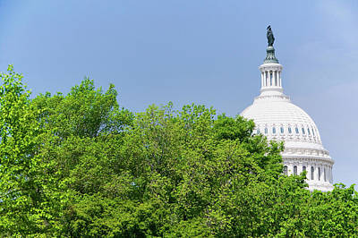 Historic Site Photograph - Trees In Spring Covers U.s. Capitol by Panoramic Images