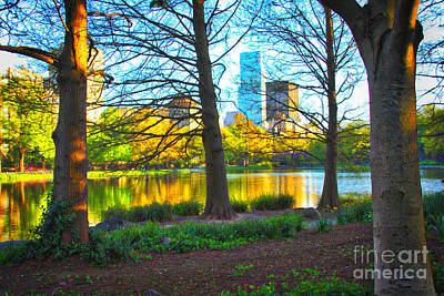 Photograph - Trees In The City by Terry Wallace