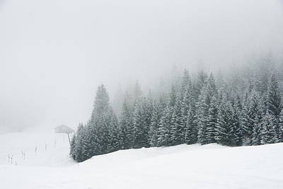 Photograph - Trees In The Fog - Minimalist Winter Landscape by Matthias Hauser