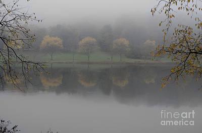 Trees In The Fog Art Print by Stephanie Emond