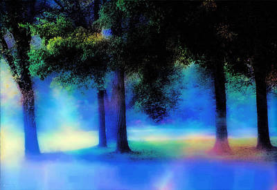 Photograph - Trees In The Mist by Barbara D Richards