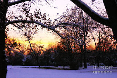 Trees In Wintry Pennsylvania Twilight Art Print by Anna Lisa Yoder