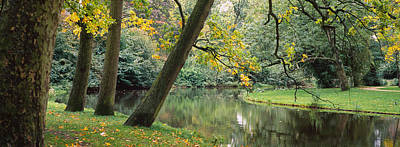 Fallen Leaf Photograph - Trees Near A Pond In A Park by Panoramic Images