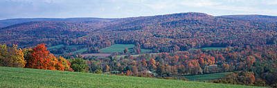 Adam Photograph - Trees On A Hill, Adams, Berkshire by Panoramic Images