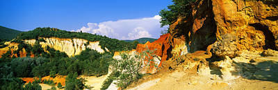 Provencal Photograph - Trees On A Hill, Colorado Provencal by Panoramic Images