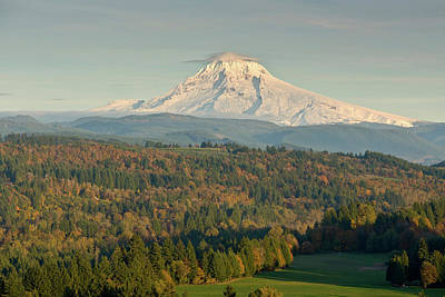 Mt Hood Photograph - Trees On A Landscape With Mountain by Panoramic Images