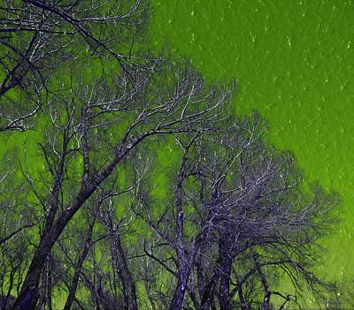 Trees On Green Sky Art Print