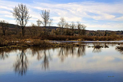 Photograph - Tree Reflection On Tranquil Lake by Christina Rollo