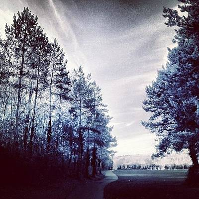 Pathway Photograph - #trees #path #invitingroads #pathway by Alexandra Cook