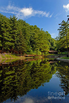 Community Photograph - Trees Reflected On Mirrored Lake  by Amy Cicconi