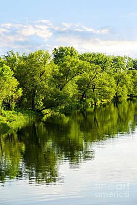 Photograph - Trees Reflecting In River by Elena Elisseeva