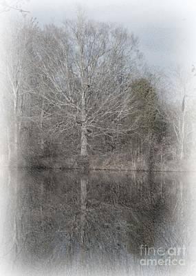 Photograph - Tree's Reflection by Sandra Clark